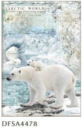 Jegesmedve - Artic World polar bears